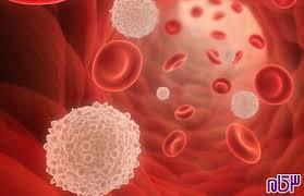 راهنمای تهیه دستورالعملهای اجرایی استاندارد (SOP) برای آزمایشگاه خون شناسی